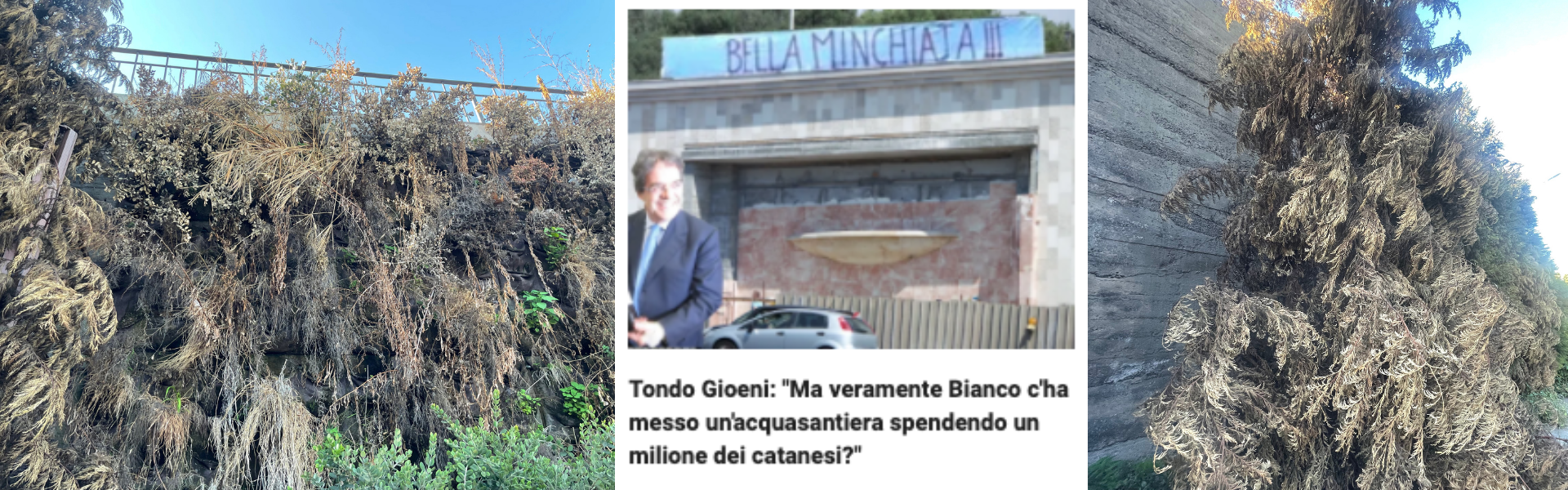 """Ennesimo spreco: il """"Giardino Verticale"""" del Tondo Gioeni è morto e la fontana fa schifo"""